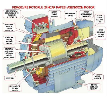 asenkron motor iç yapısı
